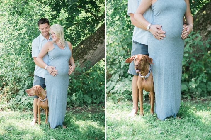 maternity-outdoor-tree-dog